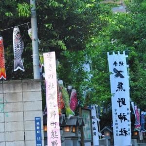 朝の散歩 熊野神社に参拝  6