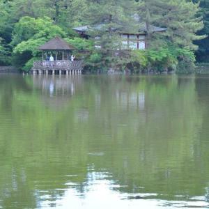 石神井公園  三宝寺池の厳島神社  5