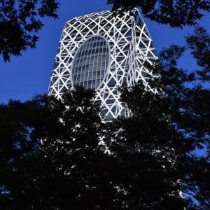 新宿界隈散歩 新宿副都心のモード学園コクーンタワー   11