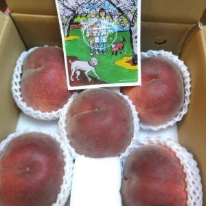 山梨・あめみや農園のでっかい桃