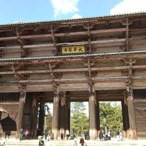 奈良公園を満喫