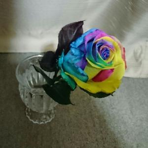 rainbowに恋。