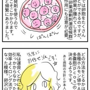 採卵スケジュール(ロング法)