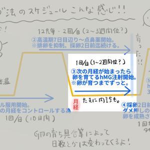 採卵周期 ③hMG注射(2)