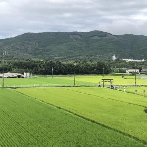 292.車神社(愛知県新城市)