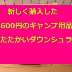 新しく購入した24600円のキャンプ用品はあたたかいダウンシュラフ
