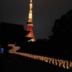 増上寺の七夕祭り。子どもも待っててよかったと喜んでくれました。