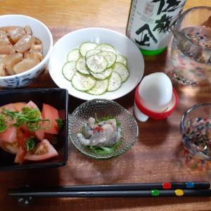 こんにゃくの煮物と夏野菜で晩酌