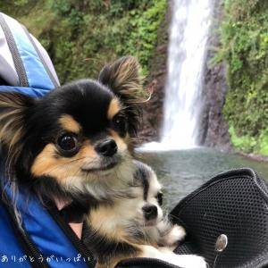 岐阜県 養老の滝へ