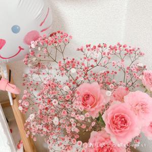 姫ちゃん、ありがとうの日