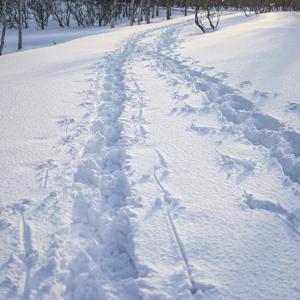 道民による氷の上の歩き方