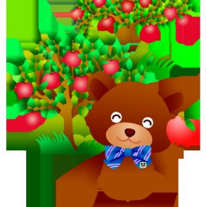 リンゴ美味しいね!