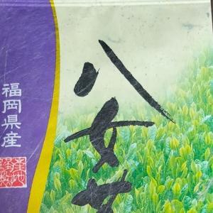福岡県産 「新茶」八女茶を試させていただきました