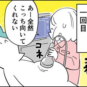 記事タイトルんぎぃちゃん出産秘話6『絶対死守』
