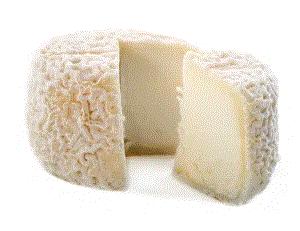 ヤギのチーズのテーステイングとは? チーズのグラン クリュ?