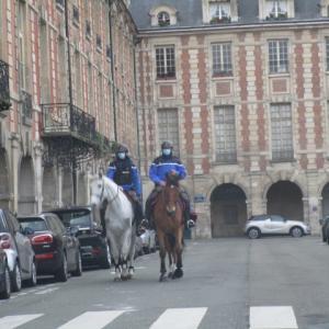 パリ市内裏道ドライヴを如何?