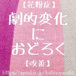 【花粉症】劇的変化におどろく【改善】