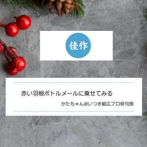 11月株取引収支結果 & 通販生活俳句『赤い羽根』