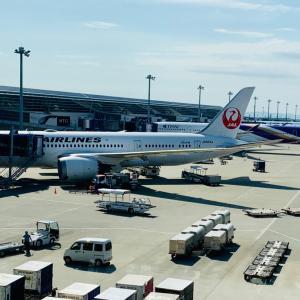 11月日本に行きます。お茶会の開催について。