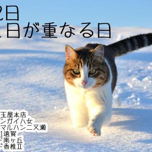 🙀【令和2年2月22日】月と日が重なる日【第二弾】🙀