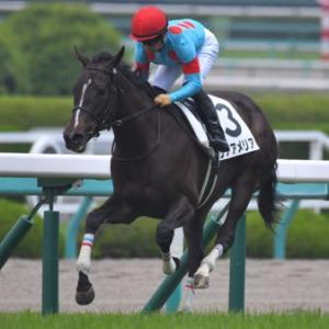 今週は誰もが注目する天皇賞(秋)、土曜日は牝馬たちが集うアルテミスステークス