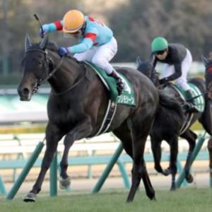 最近は安田記念でも活躍する名馬を輩出しています。ダービー卿チャレンジトロフィー!