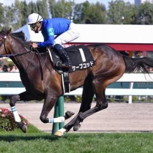 過去2戦は牝馬が優勢。故に波乱含みの葵ステークス。