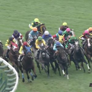 今週の波乱度が高いレース!函館日刊スポーツ杯の注目馬について
