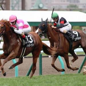 土曜日札幌競馬のSTV賞で札幌記念の傾向を早めに掴む