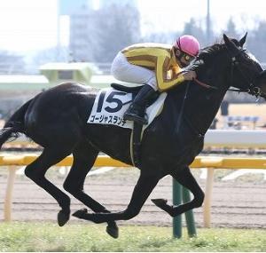 お盆休みの中央競馬。まずは日本海ステークスをしっかり取って札幌記念へと。