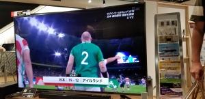 日本、アイルランドに勝ったよー