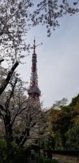 東京タワーに階段で登ってみる