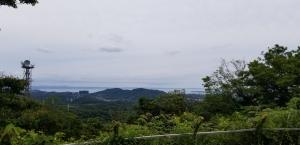 大楠山(三浦半島)