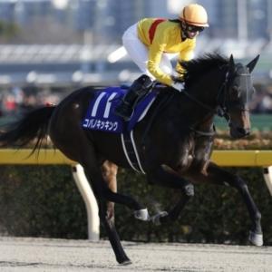 昨年の勝ち馬コパノキッキングに今年も期待!