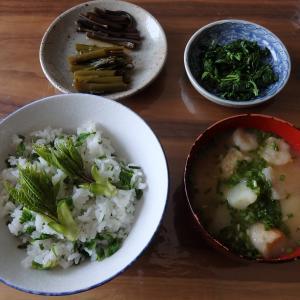 北海道の山菜料理 第2弾