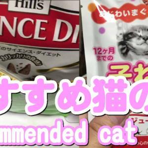 おすすめエサ子猫の餌|サイエンスダイエット まぐろ 子ねこ用 カリカリとミャウミャウ ジューシー