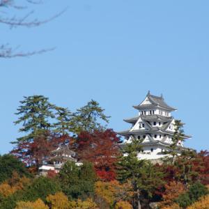 お城と紅葉のコントラストは最高でした!・・・岐阜・郡上市