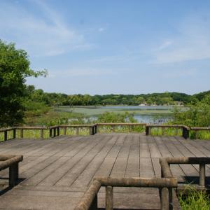 ドライブ散歩(愛知・刈谷)洲原公園