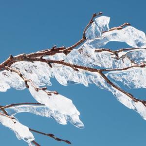 【2019年4月雪山】越美山地の最高峰!「能郷白山」ロング雪山ピストン(後半)
