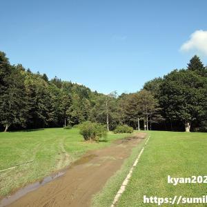 【キャンプ場レポ】幌向川ダム公園 親水ゾーン (岩見沢市)