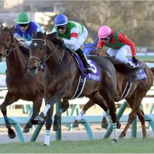 神戸新聞杯! 銀行レースでもちょっとした勝ちを拾っちゃおう!