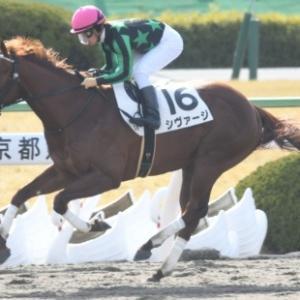 高松宮記念展望!! 自然と戦うのがKEIBAです!