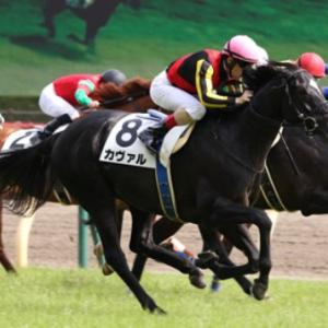 新潟記念は、実力と陣営のやる気が揃ったあの馬を狙っちゃおう!