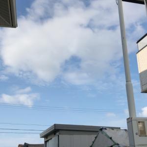 忙しくなるぞう〜   曇りの合間のメダ活日和