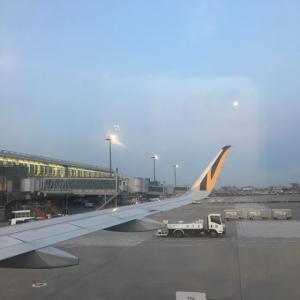 2019.04 台湾へ出発HND深夜便タイガーエアラインに乗ってみた。