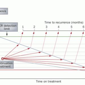 MMR後のCML治療:ISがどんどん下がらなくても焦らずに