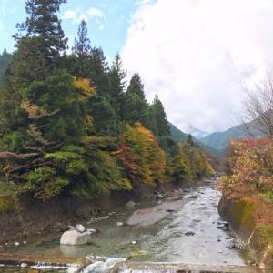 大芦川の紅葉
