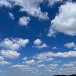 今日はたくさん空を見上げました