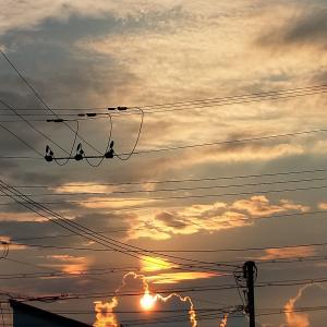 ケサノソラ 今朝の空