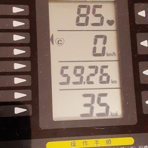 朝練95分、35kcalちゃいます、1,035kcalどす。